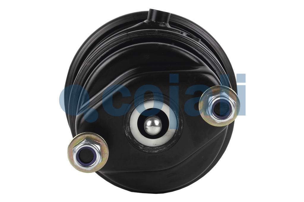 DOUBLE DIAPHRAGM SPRING BRAKE (DISC BRAKE) 14/24, 2851108, 41227566