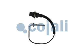 EXHAUST GAS TEMPERATURE SENSOR | 2260901