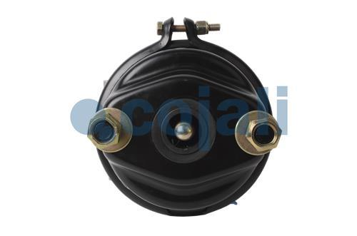 DOUBLE DIAPHRAGM SPRING BRAKE (DISC BRAKE) 16/24, 2851100, 9253840010